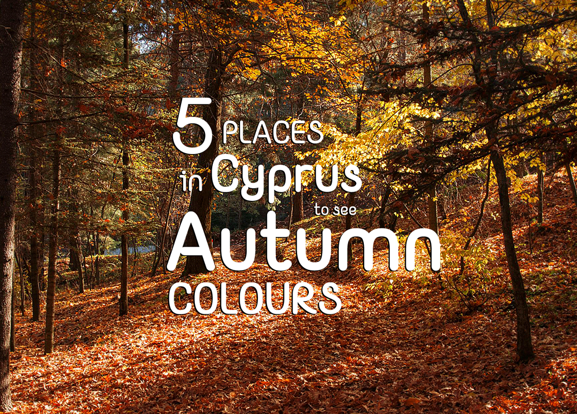 PLACES IN CYPRUS TO SEE AUTUMN COLOURS