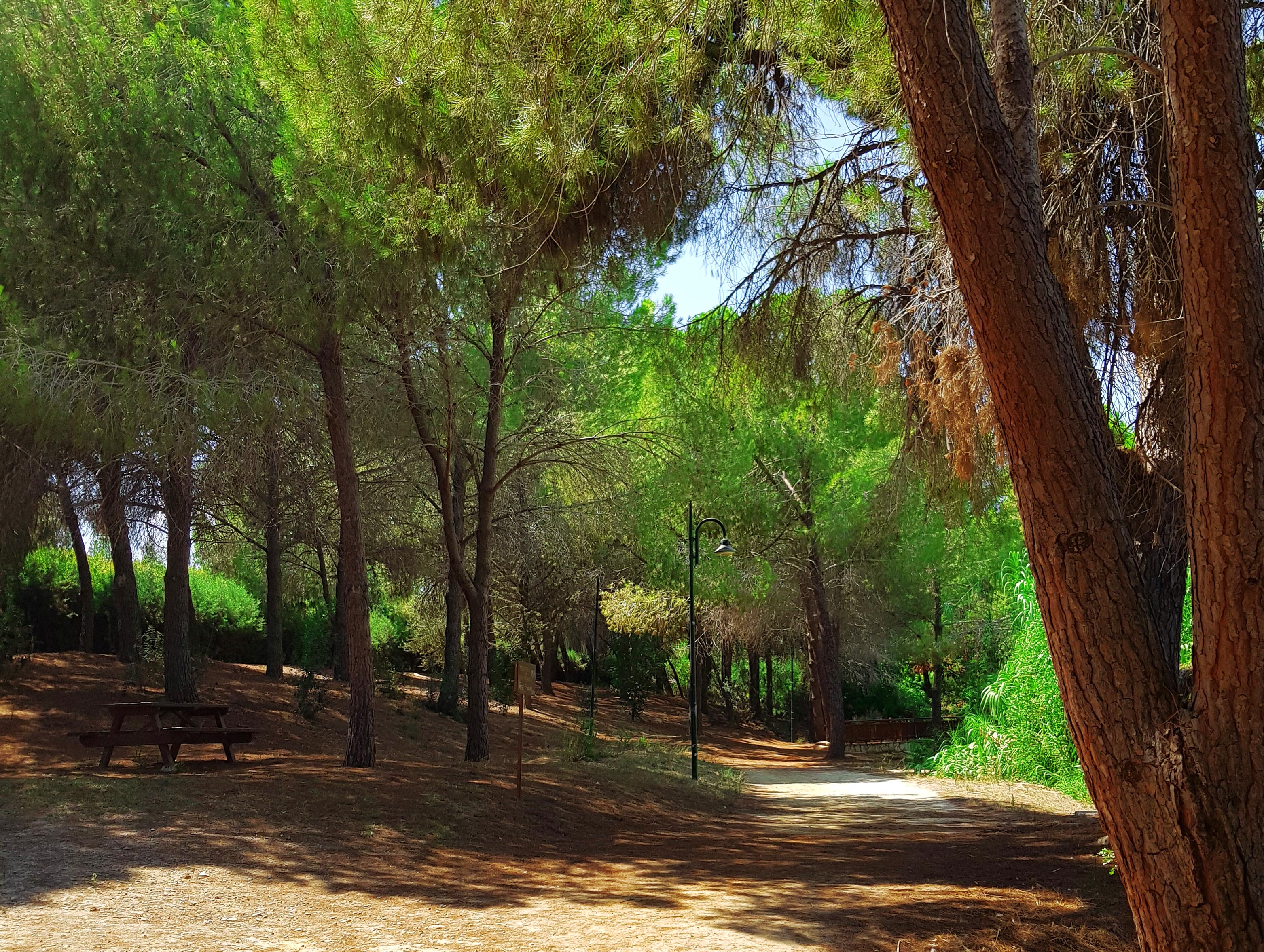 Athalassa National Forest Park9