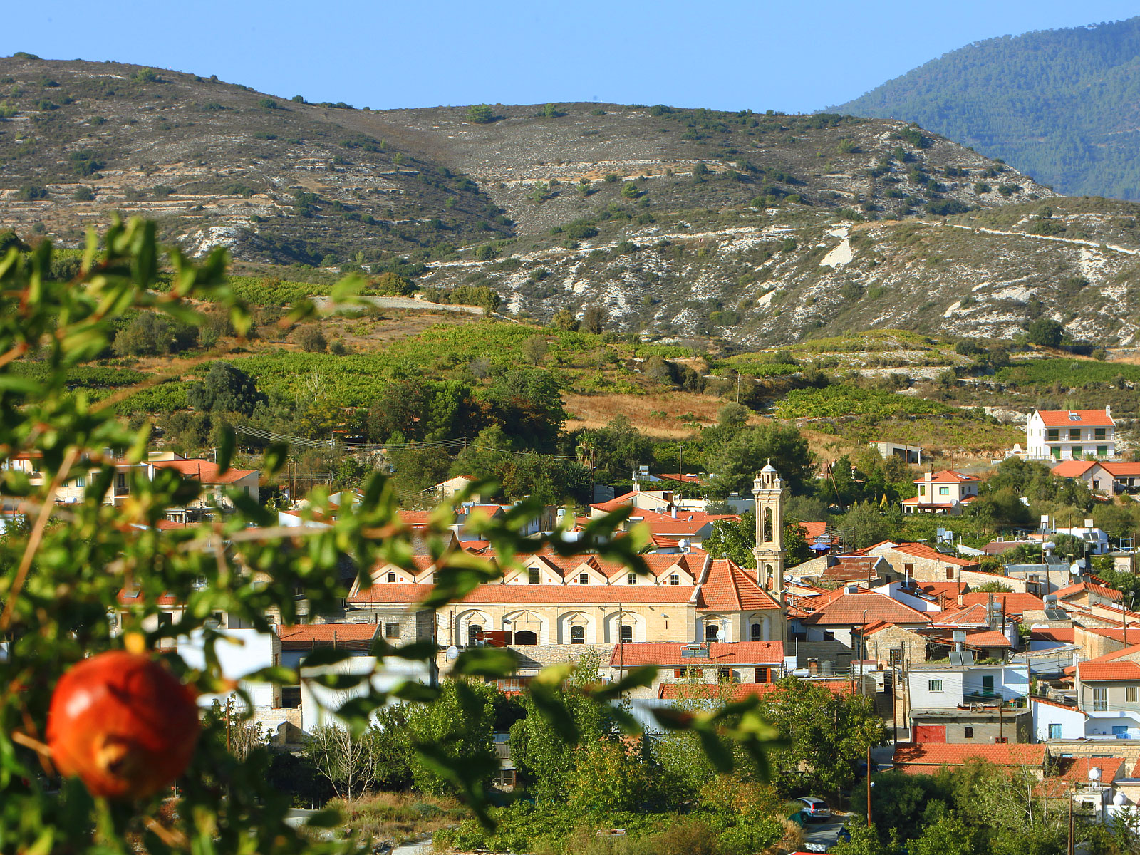 Krasochoria Lemesou (Limassol Wine Villages)