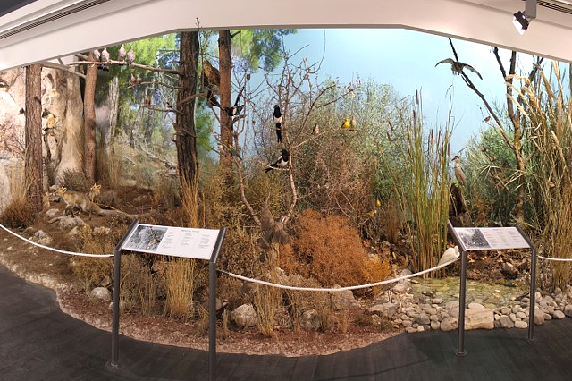 Environmental Information Centre in Episkopi