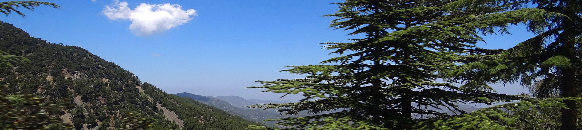 TROODOS NATURE TRAILS